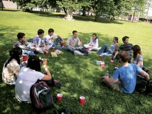 Bos_leisure_picnicinpark_web