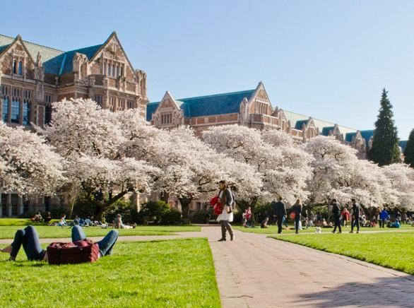 ワシントン大学:イメージ