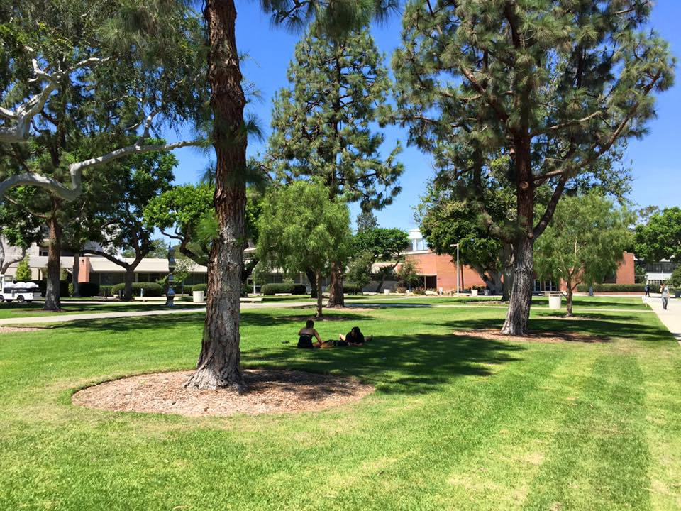 【大学附属】カリフォルニア州立大学ロングビーチ校(IEP):イメージ