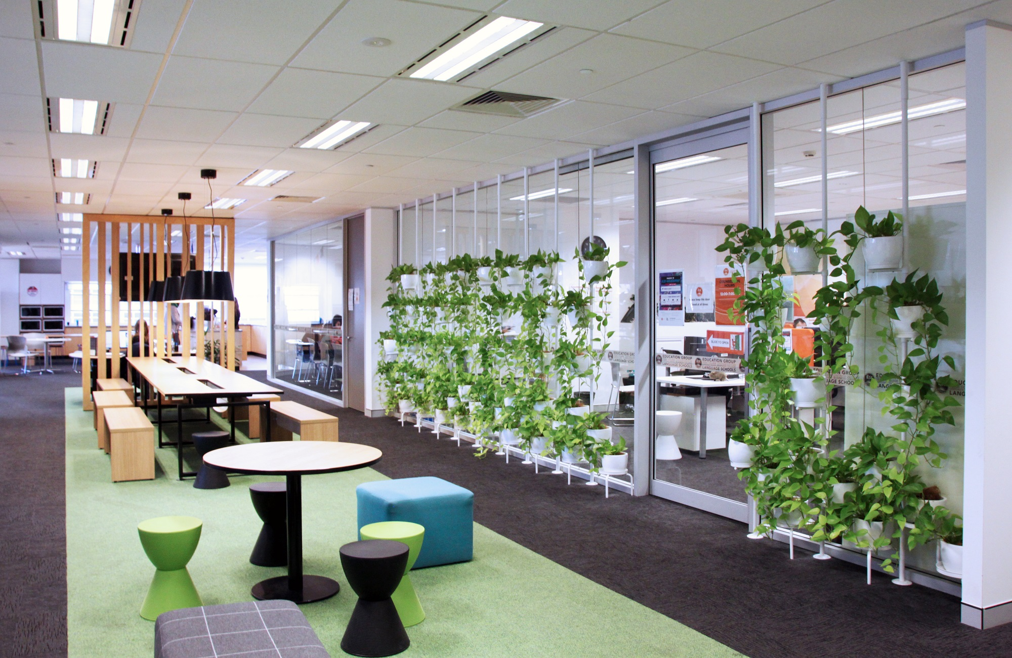 ILSC シドニー校:イメージ